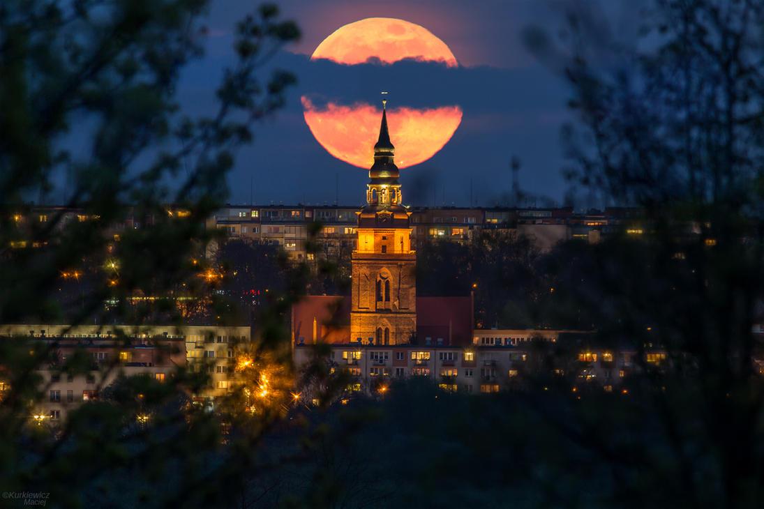 Today in Poland by Sesjusz