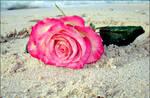 Pink so0os