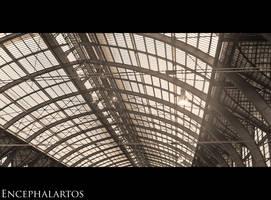 La Derniere Gare du Monde IV by Encephalartos