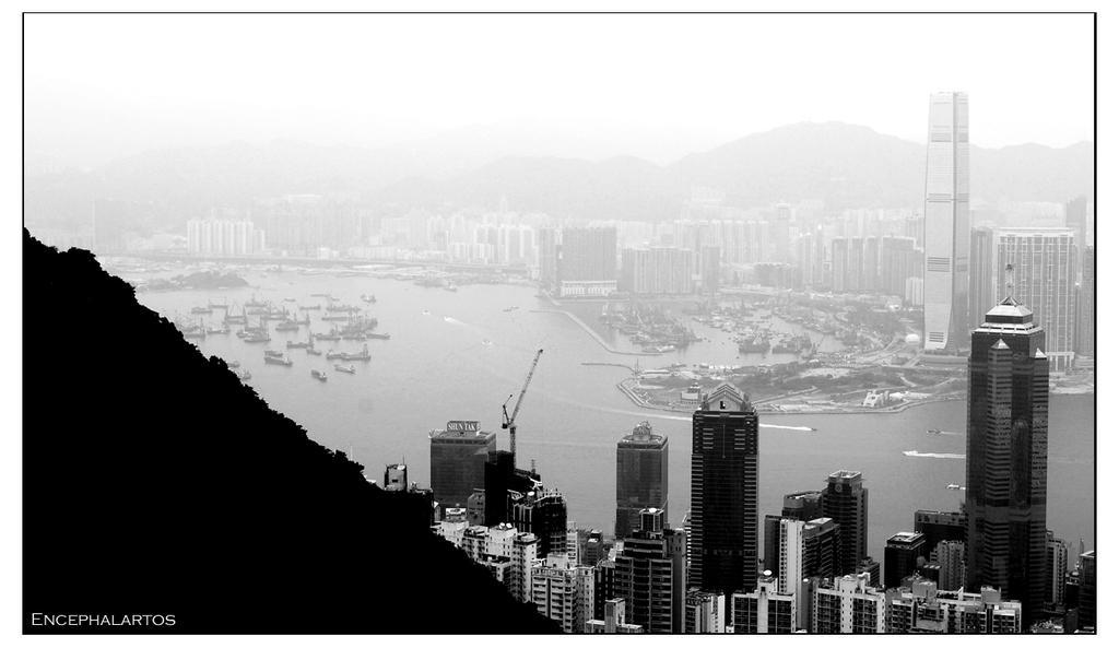 Hong Kong Bay by Encephalartos