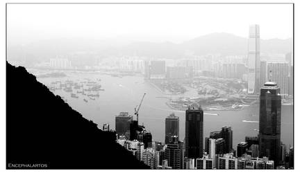 Hong Kong Bay by Encephalartos