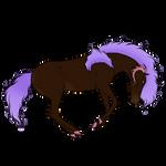 ID 7940 Nightshade
