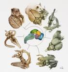 Vertebrate Brain Evolution Cover