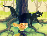 Mangrove Cats