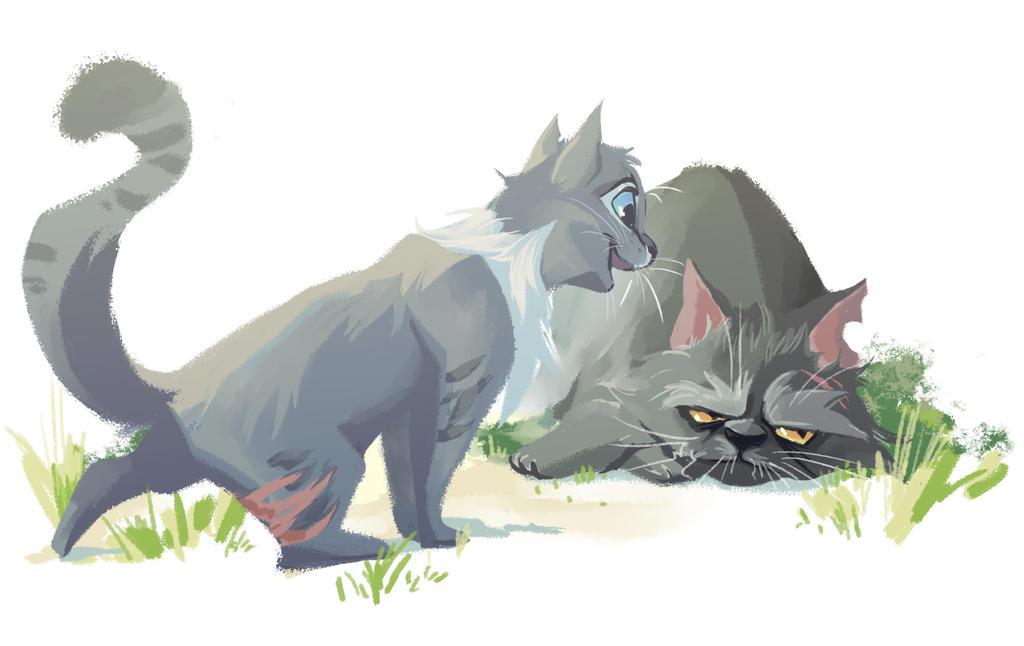 Warriors Cats Cinderpelt Cinderpelt and Yellowf...