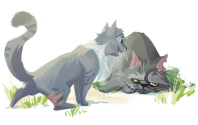 Cinderpelt and Yellowfang by Bedupolker