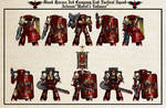 WH40K -  BR 3rd Co. 2nd Tactical Squad (Post A.C.)
