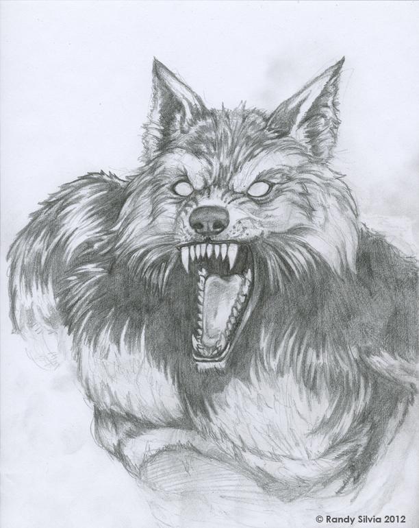 Werewolf Bust Sketch by Ransolo on DeviantArt