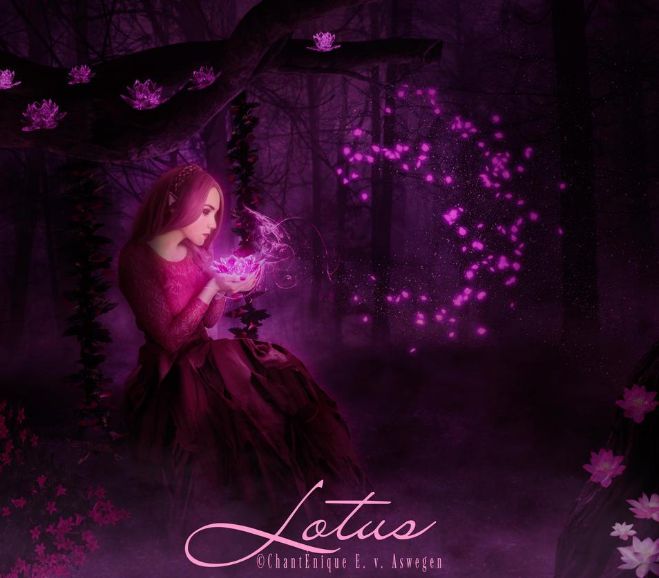Lotus by FrostyVega
