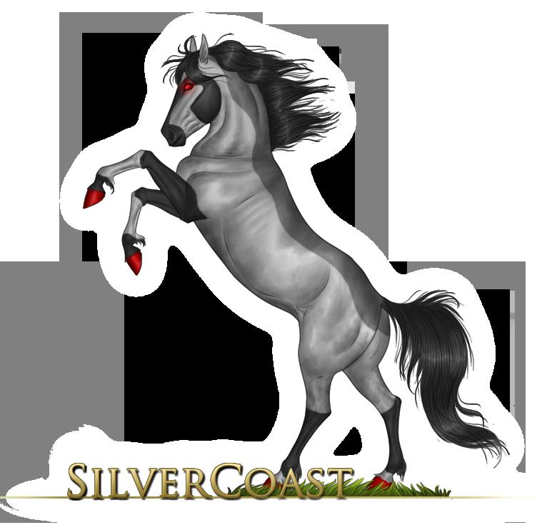SilverCoast's Profile Picture