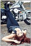 -:Harley Davidson:-