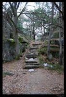 Stairway to Wilderness by Thornserpent
