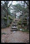 Stairway to Wilderness