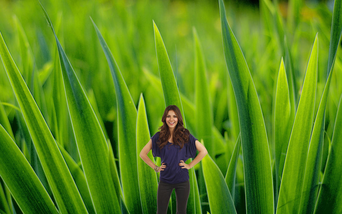 Shrunken Victoria Justice in Grass! by randomstuff126