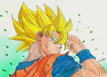 Goku by feliperatinho