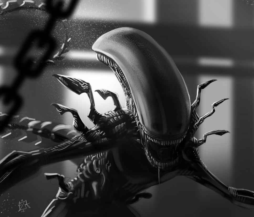Alien Test by AlexAmezcua