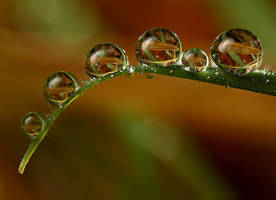 Natural Refraction by Alliec