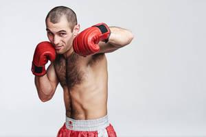 Boxer I by DIVASOFT