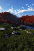 Rocky meadow by villekroger