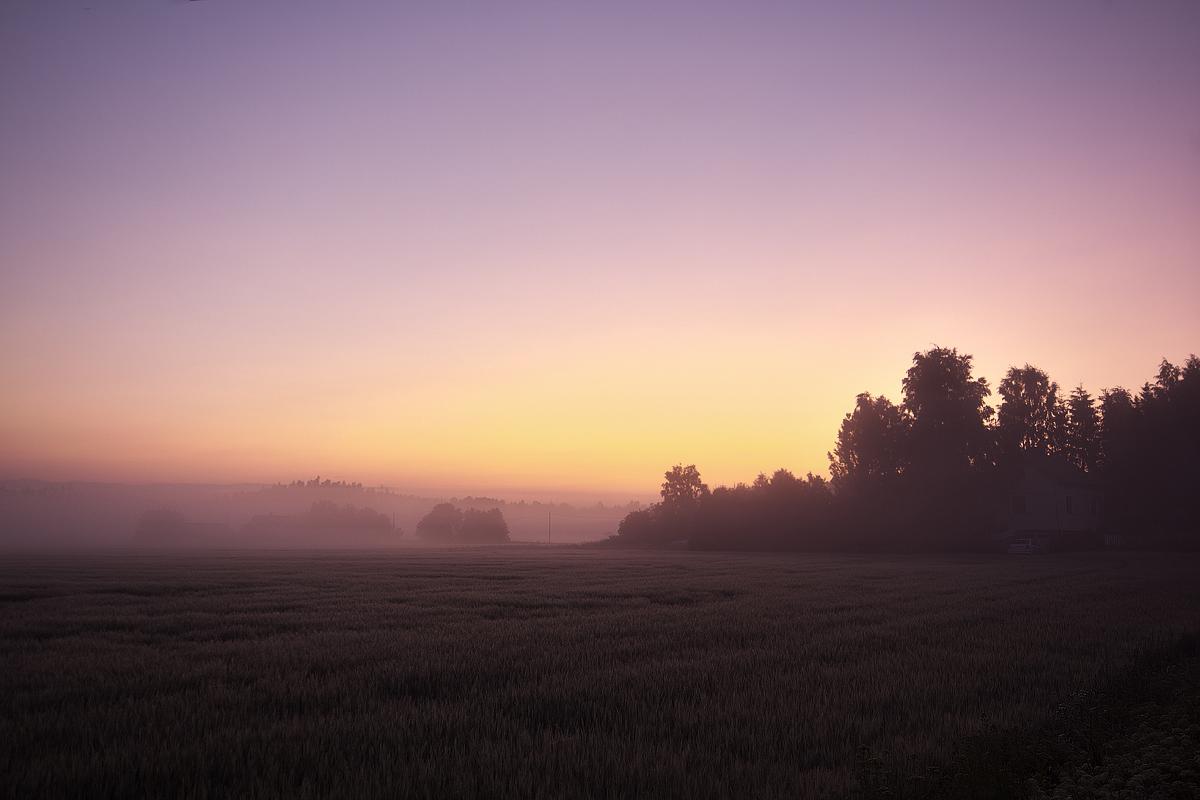 Dawn by villekroger