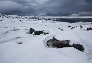 The shores of Varangerfjorden