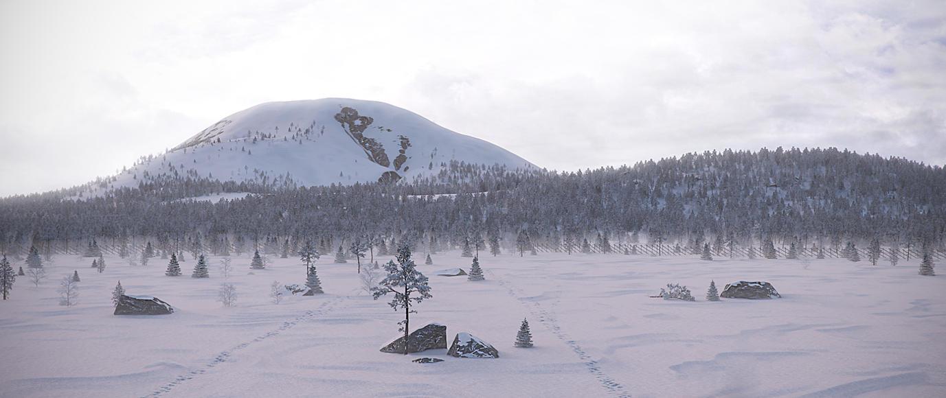 Reindeer country by villekroger
