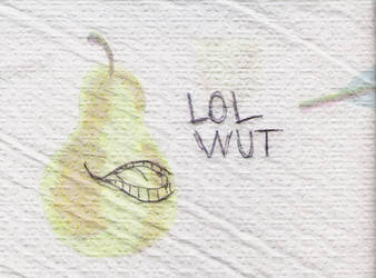 LOL WUT fanart. by AmandaTheStampede