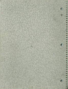 stars on my notebook