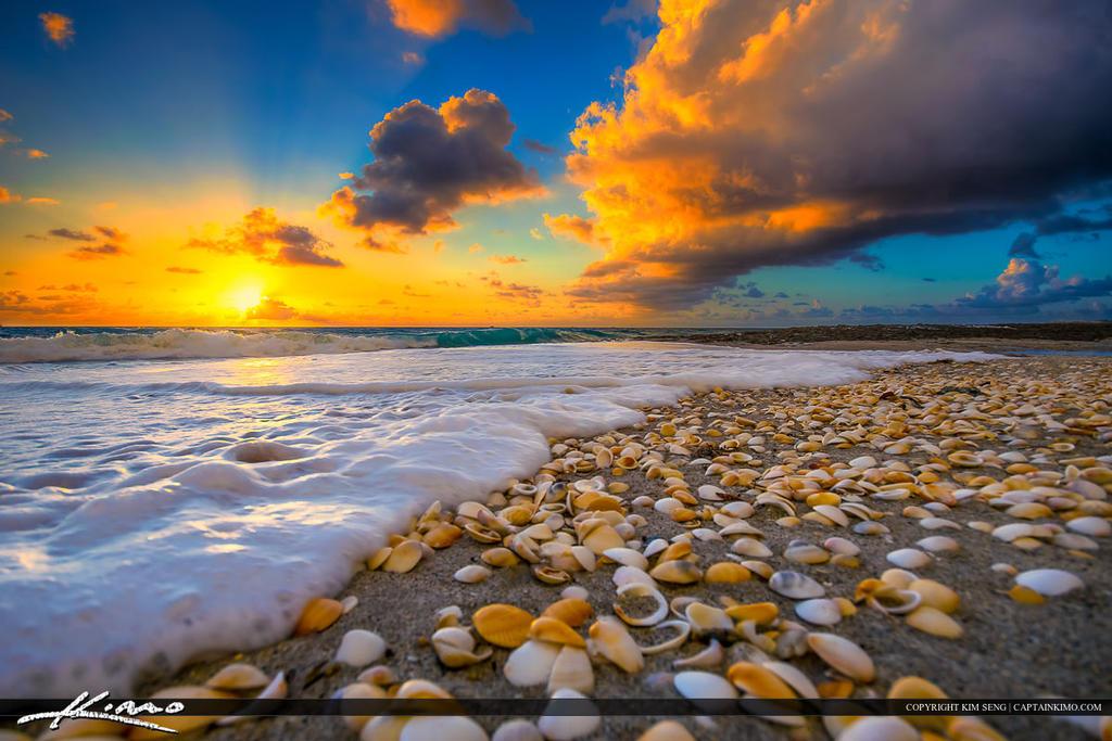 Happiness Island Resort Abu Dhabi