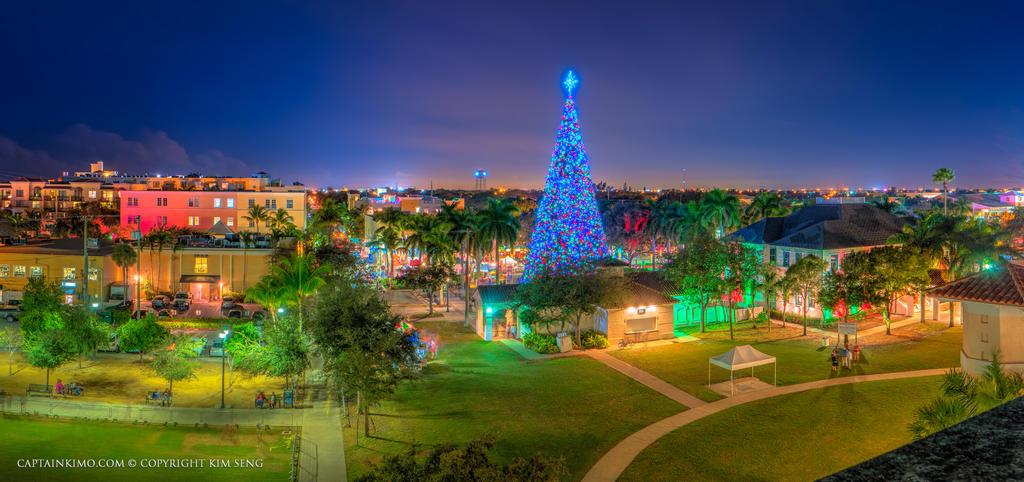 16 Ft Christmas Tree