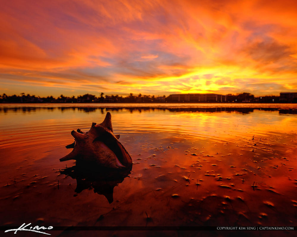 Conch-Shell-Jupiter-Tequesta-Florida-Fiery-Sunset by CaptainKimo