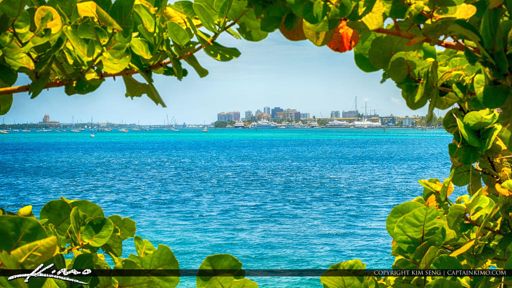 Camera Shop West Palm Beach
