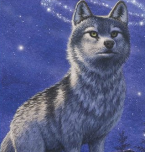 WolfandPandalover's Profile Picture