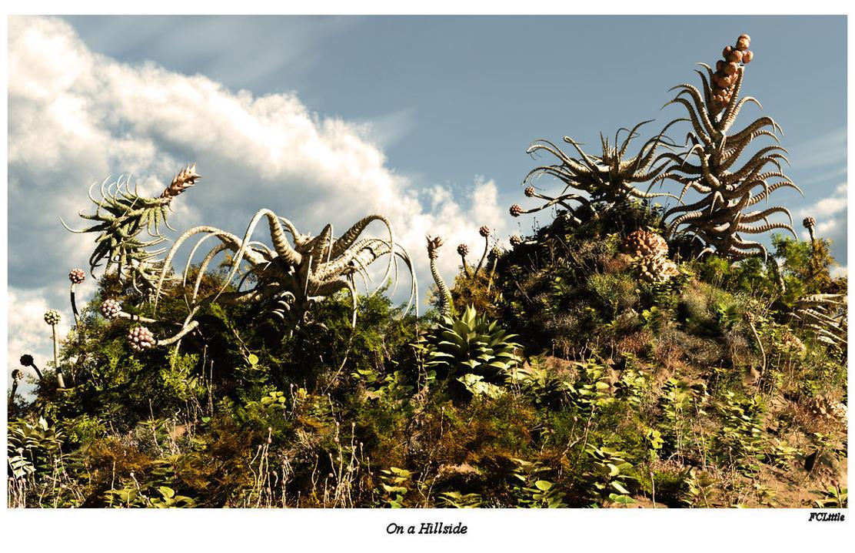 On a Hillside by FCLittle