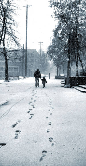 Snowy Portland