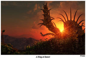 A King at Sunset by FCLittle