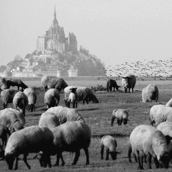 Mont St Michel III by alexandrephilippe