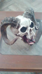 CARNERO SKULL2 by ascencioirving