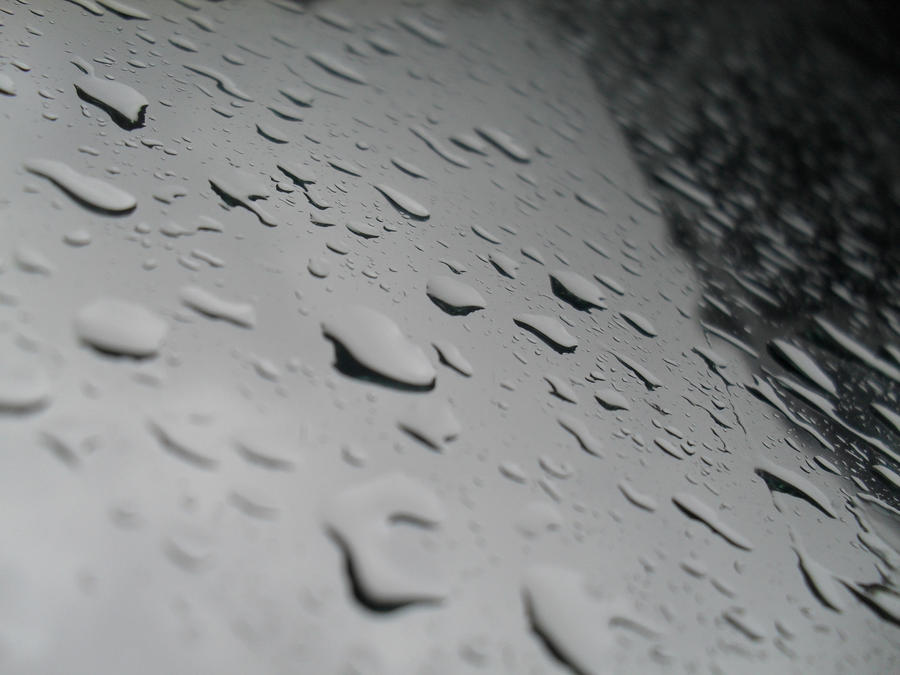 let the rain pour by the-denied
