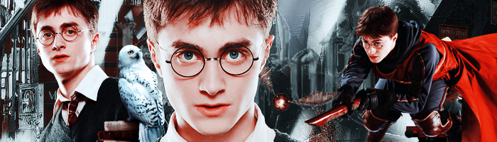 Harry Potter Banner by MissLoyal