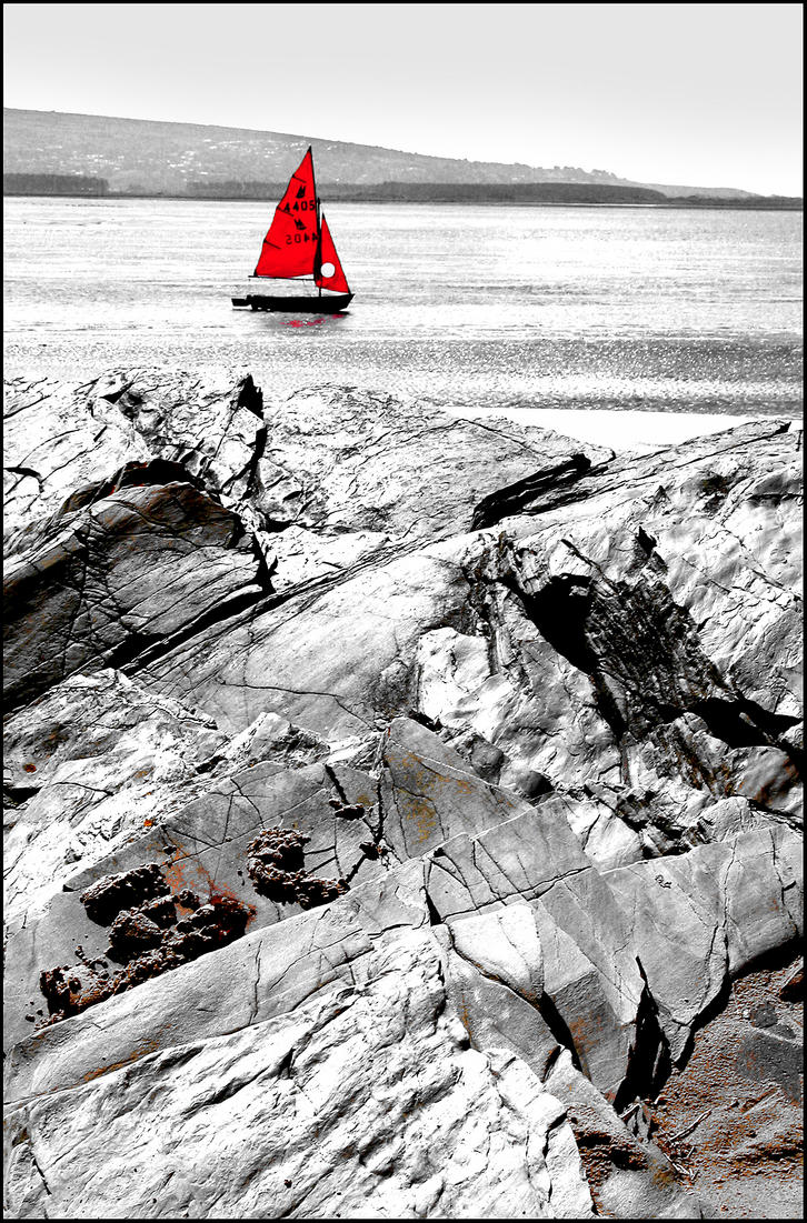 Red Sail by Wildfowl