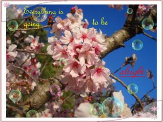 Cherry Blossom Wallpaper by EmoNightEmoDay
