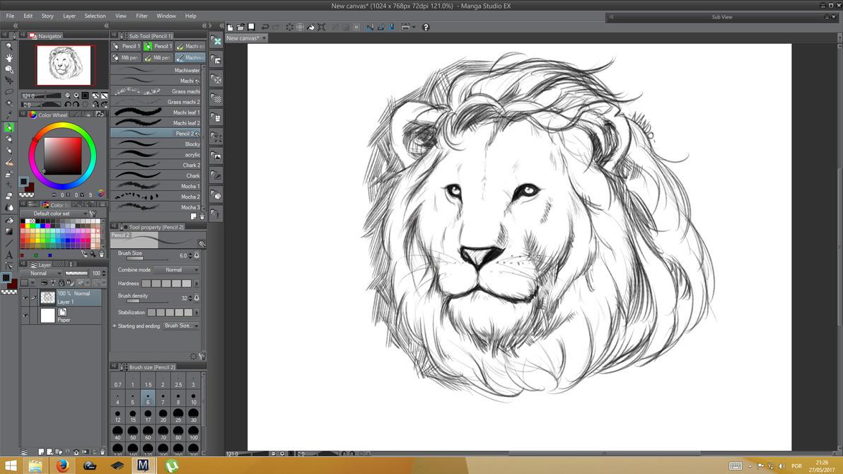 Lion quick sketch by Machiazu