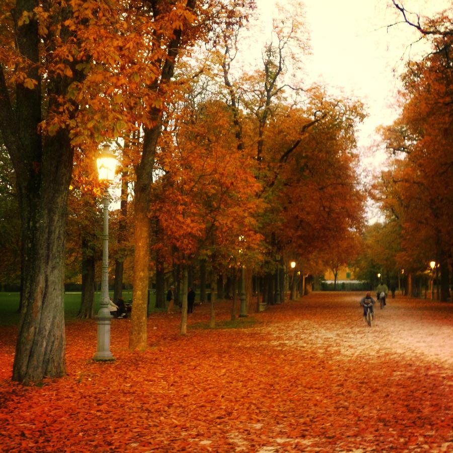 Autumn Park by Ninelyn