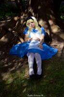 In Wonderland by Thecrystalshoe