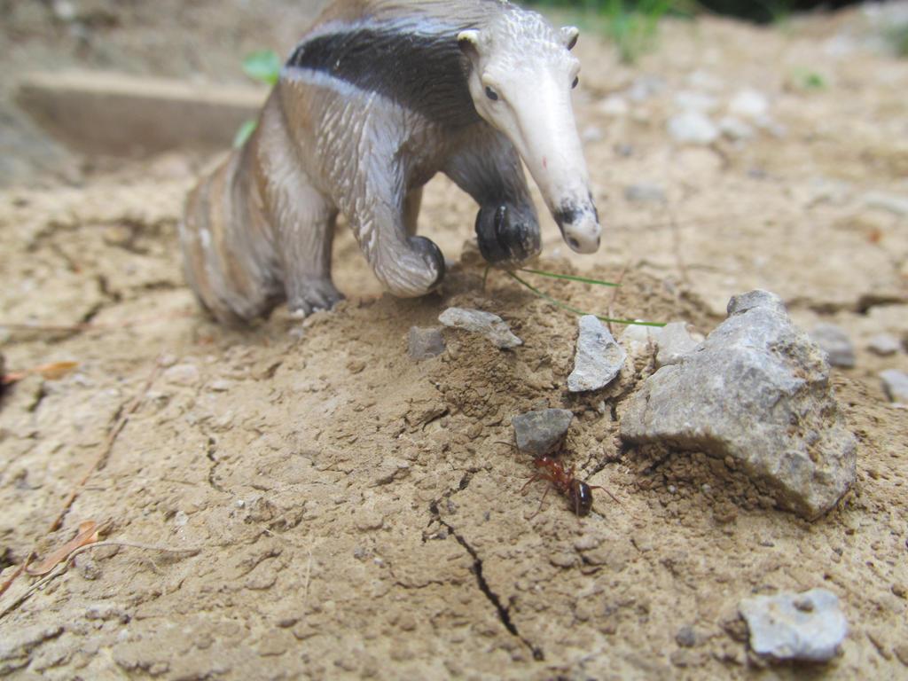 animaux schleich gazelle