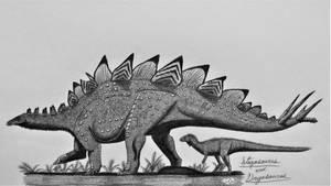 Stegosaurus stenops and Dryosaurus altus