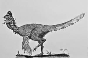 Anzu wyliei by AcroSauroTaurus