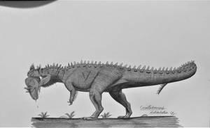 Ceratosaurus dentisulcatus by AcroSauroTaurus