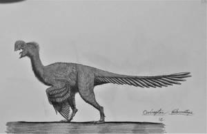 Oviraptor philoceratops by AcroSauroTaurus